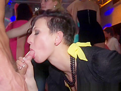 Real party amateurs getting doggystyled